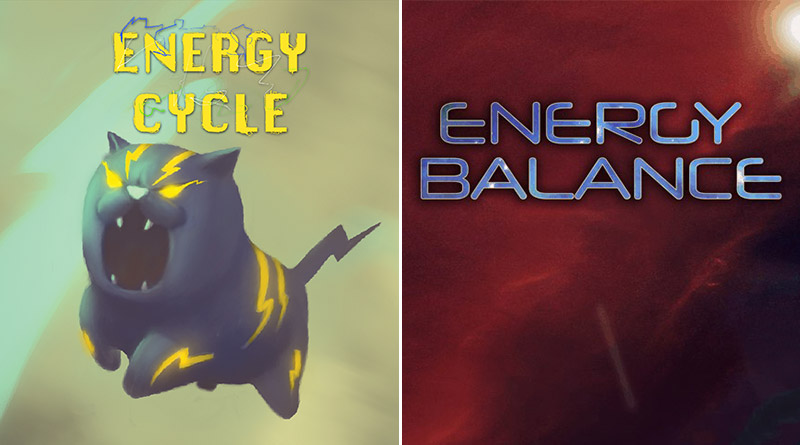 Energy Cycle & Energy Balance PS Vita