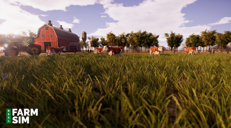Real Farm Sim Nintendo Switch